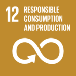TheGlobalGoals_Icons_Color_Goal_12