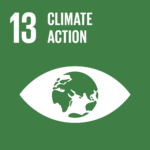 TheGlobalGoals_Icons_Color_Goal_13